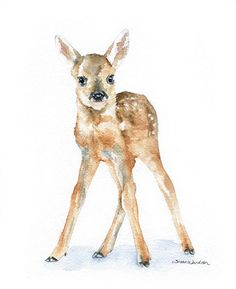Deer Fawn Watercolor Painting Giclee Print 11x14 por SusanWindsor, $24.00