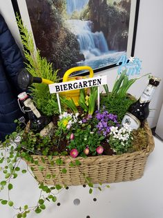 mini biergarten geschenk f r m nner geschenke schenken verschenken blumen pflanze bier. Black Bedroom Furniture Sets. Home Design Ideas
