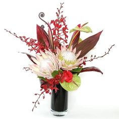 Tropical Flower arrangement-Anthurium, fern shoots, king protea, ti leaf stalk and vanda orchids...beautifully arranged in a black glass cylinder vase