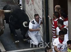 ©JESUS DIGES/EPA/MAXPPP epa04834719 A 'mozo' or runner falls in front of one of the bulls from the Jandilla ranch during the first bullrun of the Fiesta de San Fermin in Pamplona, Spain, 07 July 2015. #photo #photos #pic #pics #picture #pictures #snapshot #art #beautiful #instagood #picoftheday #photooftheday #color #exposure #composition #focus #capture #moment
