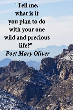 """""""Tell me, what is it you plan to do with your one wild and precious life?"""" -- Poet Mary Oliver – On Mt. Lemmon, Tucson, Arizona, image by Florence McGinn -- Enjoy quotes from creative spirits and minds at http://www.examiner.com/article/travel-a-road-of-literate-quotes-about-the-journey"""