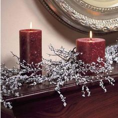 DIY: Making Iced Branches - save on crafts - Christmas - Save On Crafts, Christmas Projects, Holiday Crafts, Diy Crafts, Noel Christmas, All Things Christmas, Winter Christmas, Christmas Branches, Christmas Candles