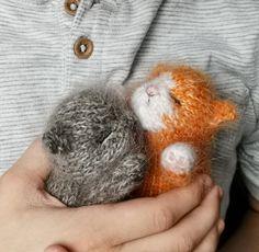 Animal Knitting Patterns, Stuffed Animal Patterns, Sewing Patterns, Knitted Cat, Knitted Animals, Sleeping Bunny, Kitten Toys, Sewing Toys, Sock Yarn