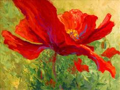 Great Big Canvas Red Poppy I by Marion Rose Painting Print on Wrapped Canvas