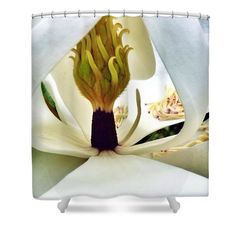 """Inside Magnolia Shower Curtain for sale by Susan Garren.  This shower curtain is made from 100% polyester fabric and includes 12 holes at the top of the curtain for simple hanging.  The total dimensions of the shower curtain are 71"""" wide x 74"""" tall."""