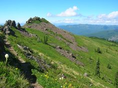 HIke of the Week: Silver Star Mountain via Ed's Trail--Stellar wildflowers and explosive volcanic views Weekend Trips, Day Trips, Sunset Campground, Gifford Pinchot National Forest, Star Trails, Trail Maps, Best Hikes, Day Hike, Silver Stars
