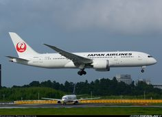Japan Air Lines - JAL JA833J Boeing 787-8 Dreamliner aircraft picture