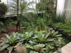 Bromélias imperiais, samambaias, brilhantinas, papirus e fênix são algumas das espécies de plantas neste jardim, no estado de São Paulo. Com 3 x 5 m, o espaço foi projetado pela decoradora e paisagista Rosane Aguiar.