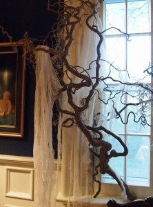 Spooky tree branches for Halloween.