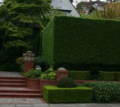 Designing with #Hedges in the #Garden www.fiskars.com