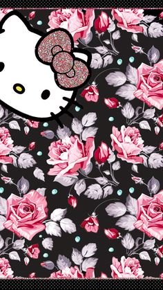 Hello kitty roses