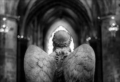 St. Giles' Angel by Tamas Katai