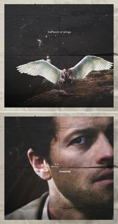 Castiel: the work of wings was always freedom #spn