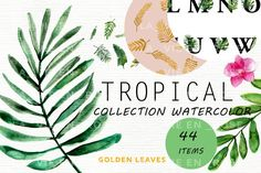 Download Watercolor clipart with tropical leaves. today - a free file. Commercial License Included. Fancy Fonts, Tumbler Designs, Free Photoshop, Summer Design, Free Graphics, Tropical Leaves, Free Illustrations, Design Bundles, Free Design