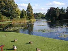 #Burnby Hall Gardens# East Yorkshire, England