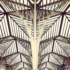 Image result for urban architecture photography