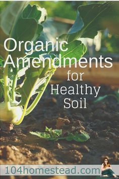 Organic Gardening Ideas Plant your produce in rich, healthy soil. Go a step further and choose organic and natural amendments to enhance your soil quality and correct imbalances. - Eat pure and natural with these organic options for your garden.