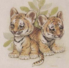 Tigre especie en peligro de extinción el mayor enemigo para el tigre es el ser humano.