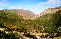 This rough, steep gravel pass crosses the Grootrivier on the northern side of the Baviaanskloof Mountains v. Mountain Pass, South Africa, Cape, Country Roads, Adventure, Mountains, Motorcycles, African, Travel