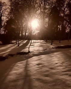 Chasing light! #fujixt1 #juneblakesgarden #daracraulphotography #snow #ireland #blackandwhite #huaweicreatives #sunset #discoverireland #instablackandwhite #bnwmagic #tree_captures #untwinemeireland #stormemma #shadowhunters #lightchaser