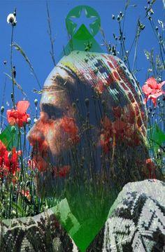 Prince of Disks Major Arcana, Parfait, Flower Power, Tarot, Prince, Flowers, Royal Icing Flowers, Flower, Florals