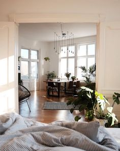 Have always loved this. The way to make a studio or one bedroom feel more open, French doors. Always French doors. Have them installed all over the place before you move in if possible so that you're not freezing and huddled somewhere while they go up lol. But they change everything.
