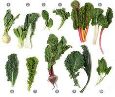 I'm never sure what I'm getting with my CSA. This is a great guide to greens with lots of great recipes  A Visual Guide to Cooking Greens at Epicurious.com