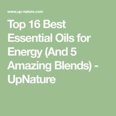Top 16 Best Essentia