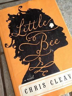 Little Bee by Chris Cleave, a beautiful story, sad, honest and inspiring. https://www.goodreads.com/review/show/1082471698