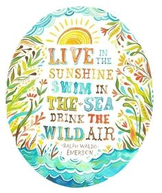 Live in the sunshine, Swim in the sea, Drink the wild air. - Ralph Waldo Emerson