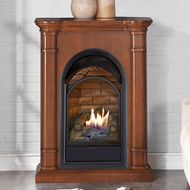 Duluth Forge Dual Fuel Ventless Gas Fireplace Insert 15 000 Btu