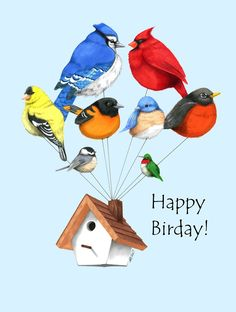 When cold, birds puff up their feathers to conserve body heat, resembling feathered balloons! They also do this when asleep or sick.