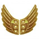 SHWINGS GOLD / WINGS FOR YOUR SHOES von Donkey Products