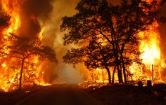 Wildfires | More Texas Wildfires