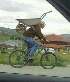 I was going to die without knowing what that handle was for under the wheelbarrow. - Ron Cats - - I was going to die without knowing what that handle was for under the wheelbarrow. Funny Images, Funny Photos, Best Funny Pictures, Funny Jokes, Hilarious, Funny Laugh, Stupid Funny, Walmart Humor, Dumb And Dumber