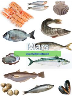 Produits de saison, poissons de mars - My Little Recettes Parfait, Detox Recipes, Food Videos, Healthy Life, Seafood, Crafts For Kids, Food And Drink, Yummy Food, Sorting