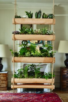 We like the mix-and-match possibilities of miniature hanging gardens from Botany Folk:          Above: Shallow terra cotta planters and dishes hang from rope to create a wall garden—or a window blind. Their narrow profile (planters are only