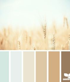 Color Palette - Living Room? with a few brighter shades.