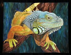 Iguana by Carol Morrissey This quilt was photographed at the 2009 International Quilt Festival in Houston, Texas. Reptiles, Lizards, Chameleons, International Quilt Festival, Animal Quilts, Landscape Quilts, Quilted Wall Hangings, Applique Quilts, Fabric Art