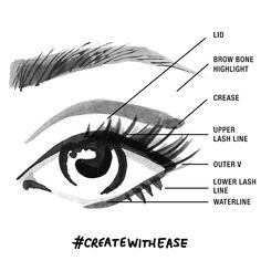 Eye makeup diagram for eyeliner application maybelline the learn about parts of the eyelid for easy makeup and eyeliner application learn where to apply eyeliner in this eye makeup diagram for beginners by ccuart Gallery