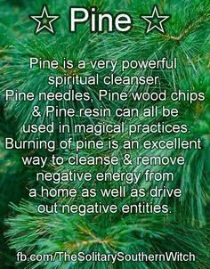 green witchcraft for beginners ; green witchcraft book of shadows ; Green Witchcraft, Magick Spells, Hoodoo Spells, Witchcraft Herbs, Luck Spells, Money Spells, Magic Herbs, Herbal Magic, Plant Magic