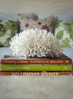 coral on top of books = perfection