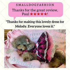 Small Dog Breeds, Small Dogs, Dog Clothes Patterns, Sewing Patterns, Pet Dogs, Pets, Small Dog Clothes, Lovely Dresses, Pet Shop