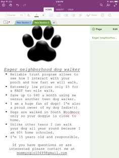 newest dog walking flyer