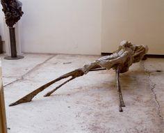 Escultura contemporánea. Figura humana. Arte. Contemporary sculpture. Human form. Art. #JavierMarínescultor