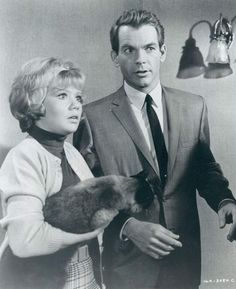 Hayley Mills, Dean Jones, and Syn Cat in That Darn Cat! Old Hollywood Movies, Classic Hollywood, Leigh Lawson, Gene Nelson, Heather Angel, Dean Jones, Lloyd Bridges, Chuck Connors, Christopher Plummer