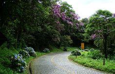 Estrada Graciosa (Paraná)