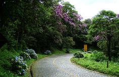 Graciosa Road - from Curitiba to Morretes