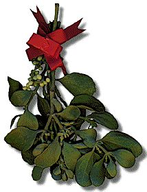 "In the Celtic language, Mistletoe means ""All Heal"". The Druid priests would cut mistletoe from a holy oak tree with a golden sickle.  The priest distributed sprigs of mistletoe to the people, who hung them over doorways as protection against thunder, lightning and other evils. Banned as a pagan symbol, mistletoe was revived by the Victorians who thought it was a sign of love and good luck."