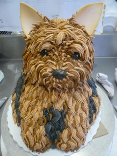 It's a Yorkie cake!! Sophie!!! Couldn't eat that cake!